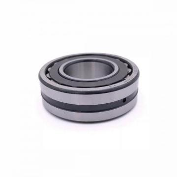 Low Price Cylindrical Roller Bearing (NU 311 ECP)