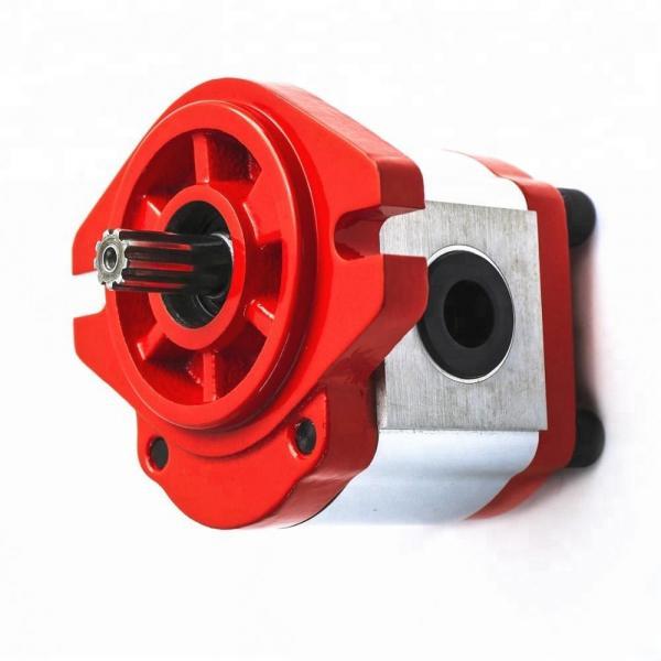 Vickers PV032R9K1T1NHCC4545X5929K0055 Piston Pump PV Series #1 image