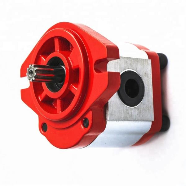 Vickers PV040R1K1BBNMML4545 Piston Pump PV Series #1 image