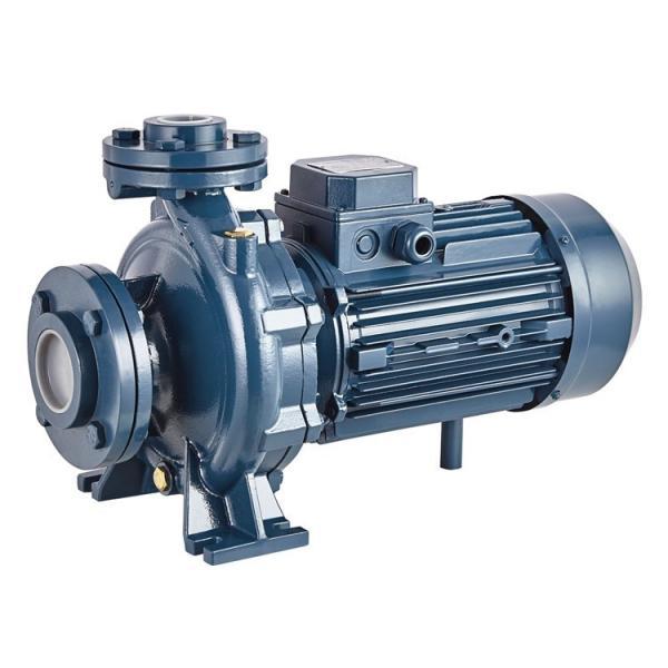 Vickers PV046L1E1BBNMFC+PGP517A0330AD1 Piston Pump PV Series #1 image