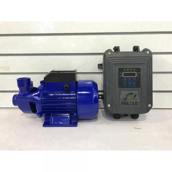 Vickers PV040R9K1T1NUPRK0048+PVAC1PMMN Piston Pump PV Series #1 image