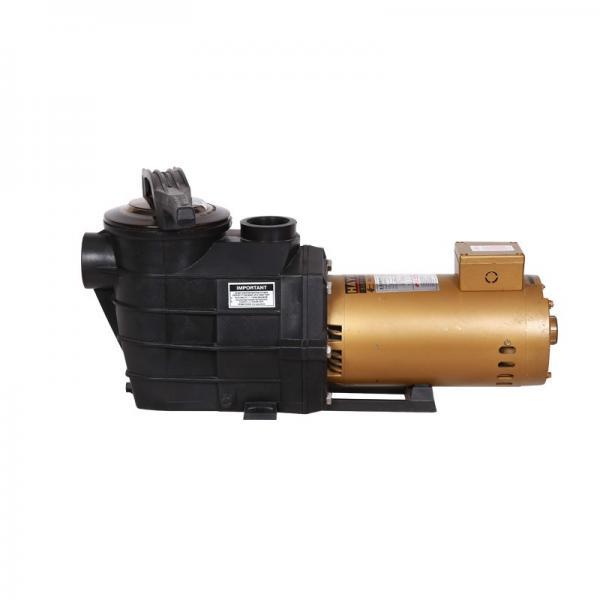 Vickers PV040R1L1AYVUPR+PVAC1PMMVS35 Piston Pump PV Series #1 image